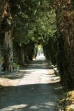 Avenue 1.jpg