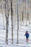 Ski Hayden Fun