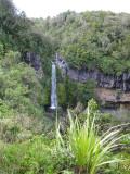 Dawson Falls. New Zealand