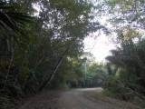 Camino del Oleoducto