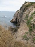 Hahei Coastline