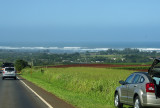 Looking from just out of Haleiwa