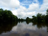 View From Canoe ~ August 18th
