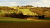 fields # 5