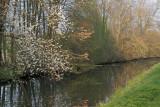 le canal au printemps.