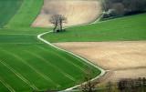 paysages d'Alsace - Alsatian Landscapes.