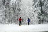 skieurs de fond.