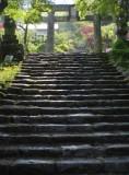 Endless steps.