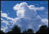 Gainesville Florida Sky