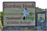 Bombay Hook NWR-DE