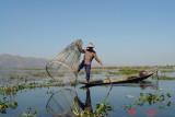 inle lake33 fishing.JPG