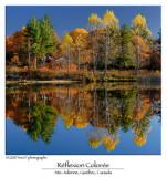 Colorful Reflexion ...