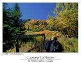 Capturing nature ...