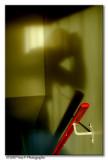 Autoportrait/shadow of me ...