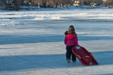 Sledding  ~  February 1