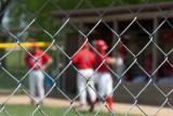 Baseball Season  ~  May 17