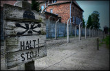 (Poland) Auschwitz - Birkenau