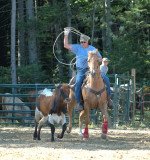 Team roping; Cowboys and such