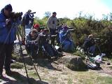 Albatross finders 2001