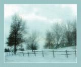 december_captures