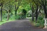 Mintaro garden in spring