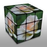 Rubik's cube experiment