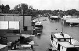 Port Dover Fish Company