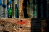 February 11 2010: One Green Bottle