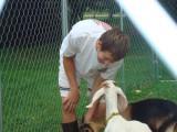 Goats 040.jpg