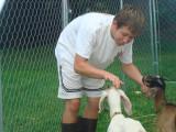 Good goats....good goats!