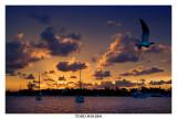 bahamas_08