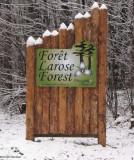 New Larose Forest logo