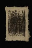 tallulah falls (lithograph) 9.5 x 7.5