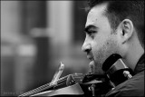 Musician 41