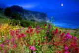 Lucia Point Moonlight Big Sur
