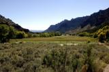 Range Creek Meadow.jpg