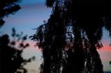 a sunset for sam