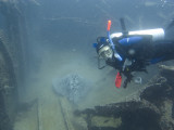 A very big ray inside the wreck and Vita