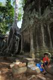 Cambodia. Ta Prohm
