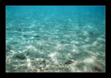 21.10.2007, Red sea, Dahab - last shot from my sunken D200