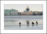 Saint Petersburg (08-10.03.2008)