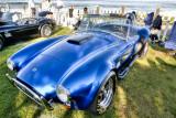 1965 F-4 Shelby Cobra  - Spirted Sportster