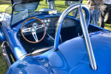 1965 F-4 Shelby Cobra - Roll Cage
