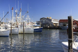 8.  The commercial fishing marina and packing house.