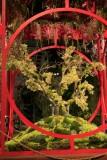 THE 2010 PHILADELPHIA FLOWER SHOW