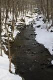 1. A snow-banked stream near Glen Falls.