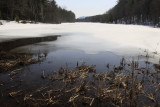 16.  The thaw has begun.