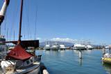 The marina in Lahaina