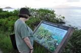 Native Hawaiian Coastal Garden