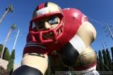 2008 San Francisco 49ers Training Camp